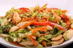 Ensalada vegetal con el pollo Imagen de archivo libre de regalías