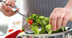 Ensalada vegetal de la lechuga de Hands Cooking Dieting del cocinero imágenes de archivo libres de regalías
