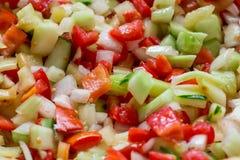 Ensalada vegetal de los tomates cortados frescos, cebollas, pimientas, cucum Foto de archivo