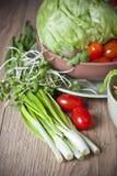 Ensalada vegetal ligera Foto de archivo libre de regalías