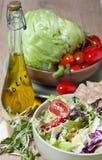 Ensalada vegetal ligera Fotografía de archivo libre de regalías