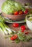 Ensalada vegetal ligera Imagen de archivo