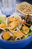 Ensalada vegetariana de la salchicha del queso de soja Foto de archivo