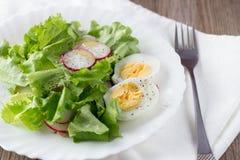 Ensalada verde con el rábano y el huevo duro en la placa blanca Fotografía de archivo
