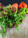 Ensalada verde fresca con los tomates y los pepinos del arugula imagenes de archivo
