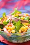 Ensalada verde fresca con maíz y la anchoa Fotos de archivo libres de regalías