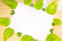 Ensalada verde fresca de la lechuga con perejil en fondo de madera Fotos de archivo libres de regalías
