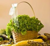Ensalada verde rizada en una cesta y otras verduras fotos de archivo