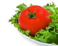 Ensalada verde y tomate imagen de archivo