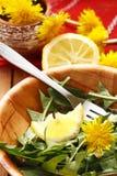 ensalada y limón Imagen de archivo libre de regalías
