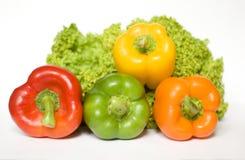 Ensalada y pimientas coloreadas Imagen de archivo