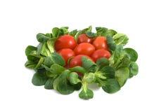 Ensalada y tomates imagen de archivo