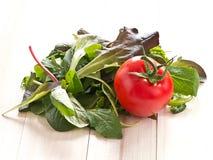 Ensalada y un tomate Foto de archivo libre de regalías