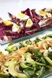 Ensaladas, salmones, verduras orgánicas, huevos duros Imagen de archivo
