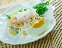 Ensaladilla Rusa. Potato Salad Recipe - Ensaladilla Rusa with salmon . closeup of a plate Stock Images