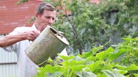 Ensam äldre man och att göra något arbeta i trädgården hemma lager videofilmer