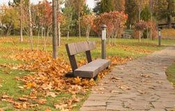ensam bänk Fotografering för Bildbyråer