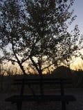 Ensam bänk med solnedgångbakgrund arkivfoton