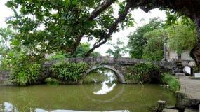 Ensam bro som ser skugga av sjön arkivbilder