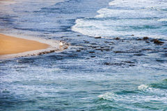 Ensam brud på stranden Fotografering för Bildbyråer