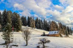 Ensam chalet i Schweiz Arkivbilder