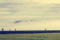 Ensam cyklist i ett dimmigt landskap Arkivfoto