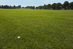 ensam enorm lawn för bollgolfgreen royaltyfri bild