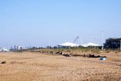 Ensam fiskare på stranden i Durban Sydafrika Arkivbild
