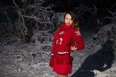 Ensam flicka i en mörk skog Arkivbilder