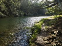 Ensam fotvandra bana för sjö Fotografering för Bildbyråer