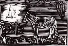 Ensam häst arkivfoton