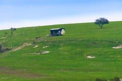 Ensam hydda på en Israel kulle Arkivfoton