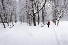 Ensam kvinna som går i en parkera under snöfall Arkivfoto