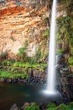 Ensam liten vikvattenfall (Sydafrika) Royaltyfria Bilder