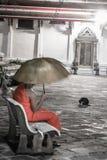 Ensam munk med paraplysammanträde på gård för buddistisk tempel för bänkinsida med den svarta katten i bakgrunden arkivfoton