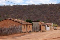 Ensam by Queixo Dantas i Caatingaen av Brasilien Arkivbilder