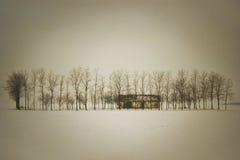 Ensam ranch Arkivbild