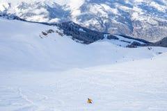 Ensam skidåkare i ett snöig vinterlandskap Royaltyfri Bild