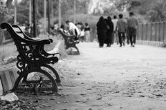 Ensam stol i parkera Royaltyfri Bild