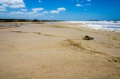ensam strand molnig sky fotografering för bildbyråer