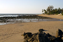 Ensam strand på solnedgången royaltyfri fotografi