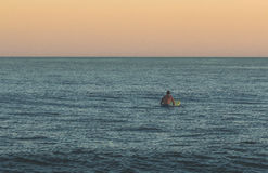 Ensam surfare som söker för vågor Arkivbild