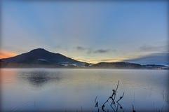 Ensam trädreflexion på sjön på gryning Bilder som används i designen, advertizing, lopp, printing royaltyfria foton