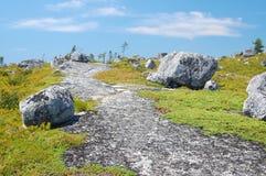 Ensam trail Arkivbild