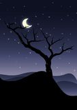 ensam tree stock illustrationer