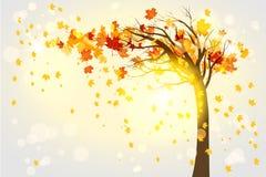 ensam tree för höst vektor illustrationer
