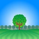ensam tree för liggande Fotografering för Bildbyråer
