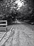ensam väg Arkivbilder