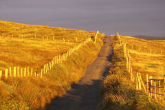 ensam väg Fotografering för Bildbyråer
