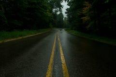 ensam väg Arkivfoto